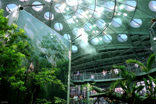 The California Academy of Science, San Francisco California