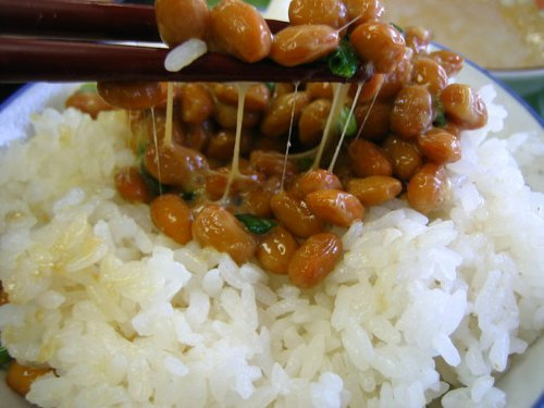 Photo of natto, Japanese fermented soy beans